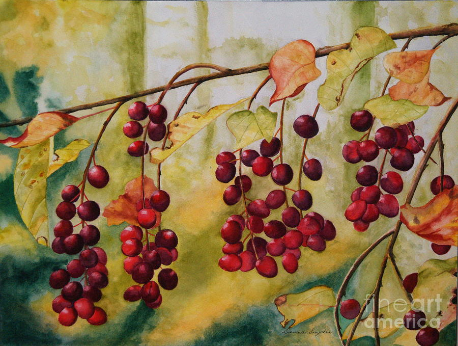 Berries Painting - A Punch Of Red by Donna Snyder