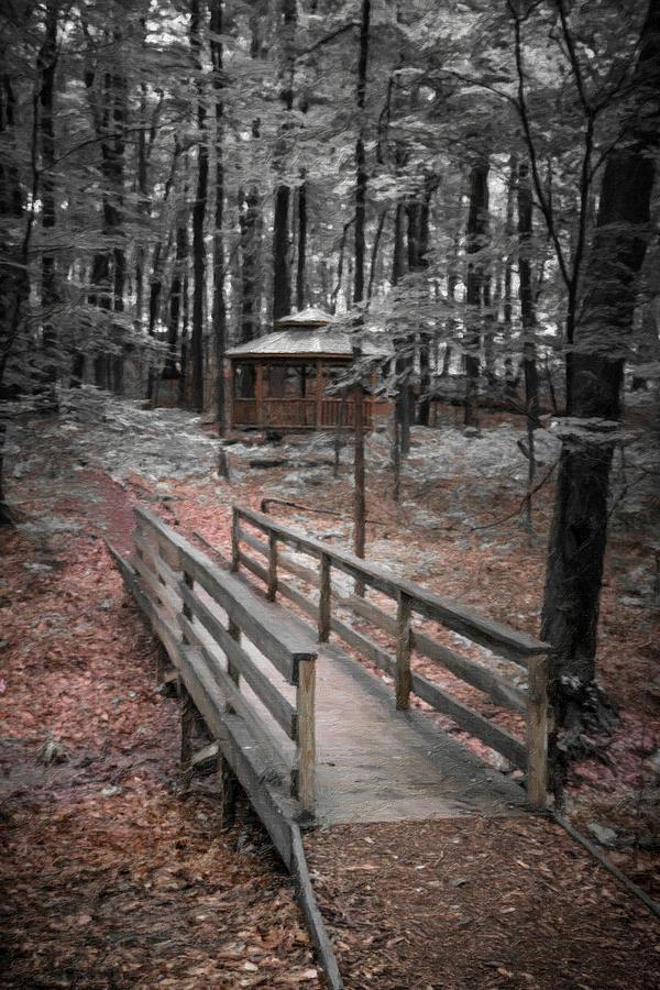 Bridge Photograph - A Quiet Place by Tom Mc Nemar