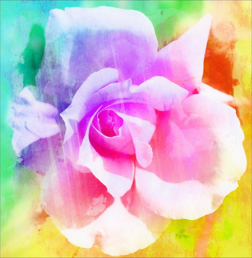 Roses Photograph - A Rainbow Of A Rose Two by Cathie Tyler