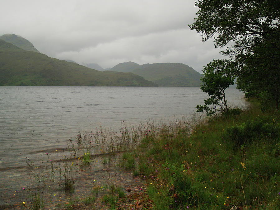 Rain Photograph - A Rainy Day At Loch Arkaig by Steve Watson