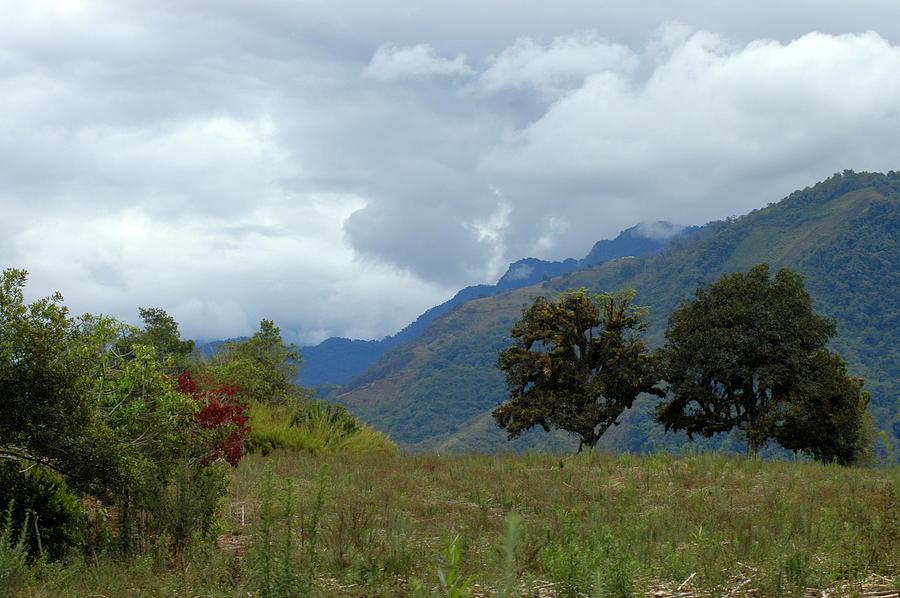 A Rainy Day In The Mountains Of Ecuador Photograph