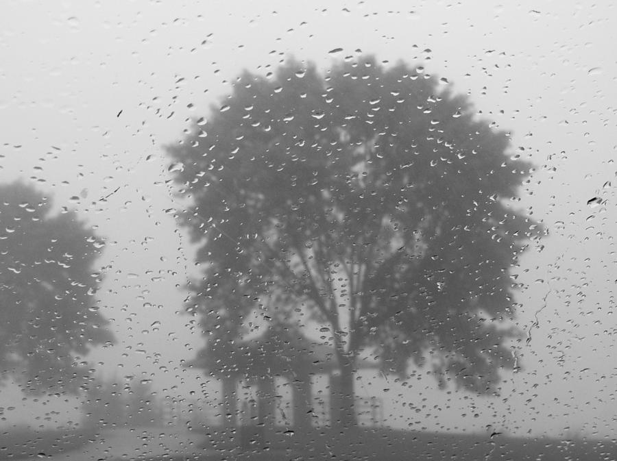 A Rainy Sunday In Sheboygan Photograph By Linda Mcalpine