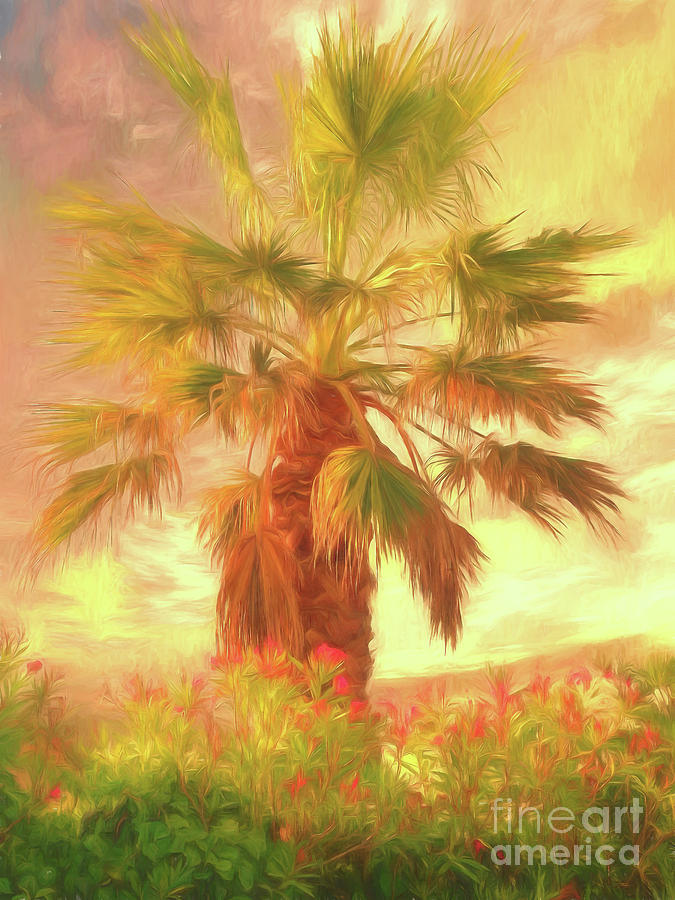 Palm Tree Photograph - A Refreshing Change Of Scenery by Leigh Kemp