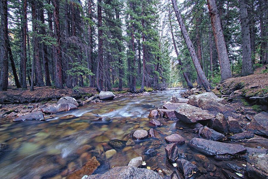A River Runs Through It Photograph