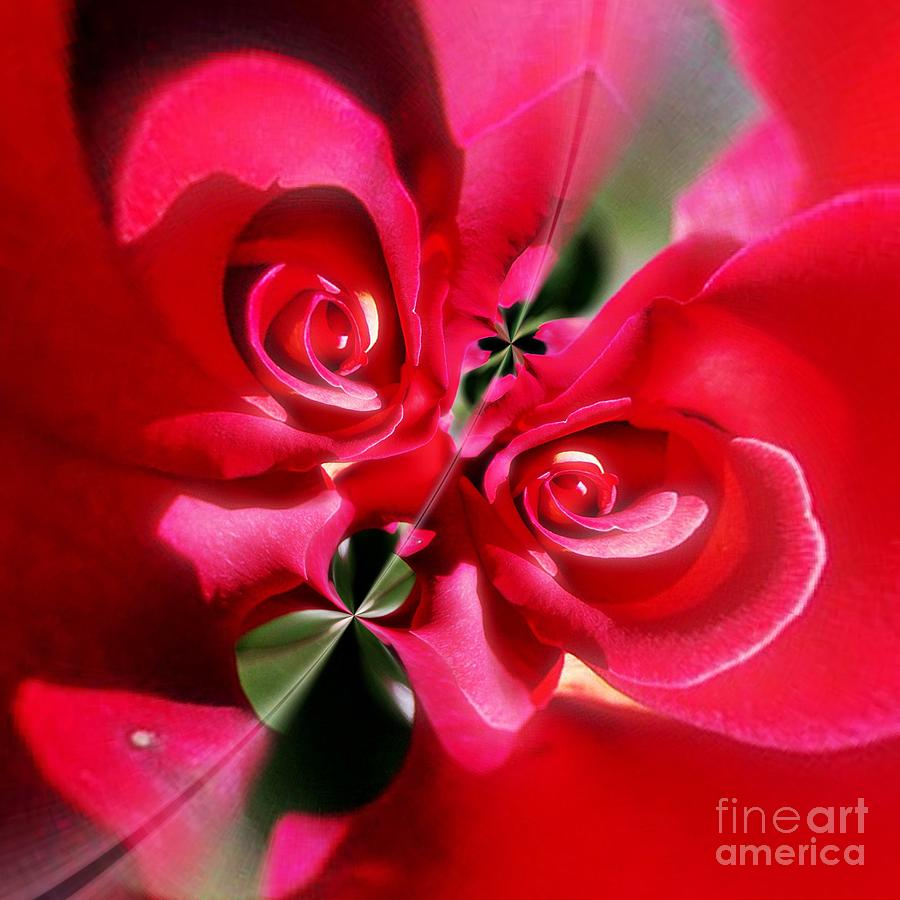 Abstract Photograph - A Rose By Any Other Name by Blair Stuart