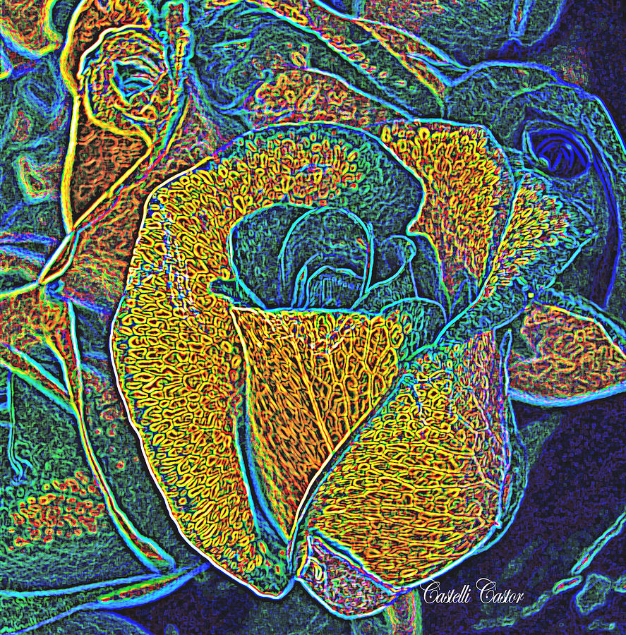 A Rose is a Rose by JoAnne Castelli-Castor