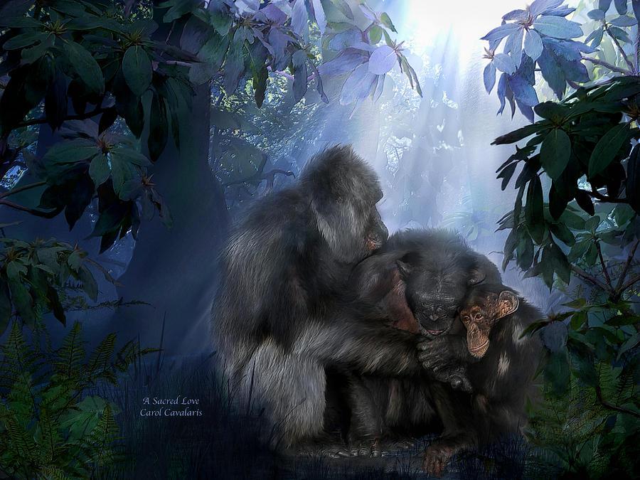 Gorilla Mixed Media - A Sacred Love by Carol Cavalaris
