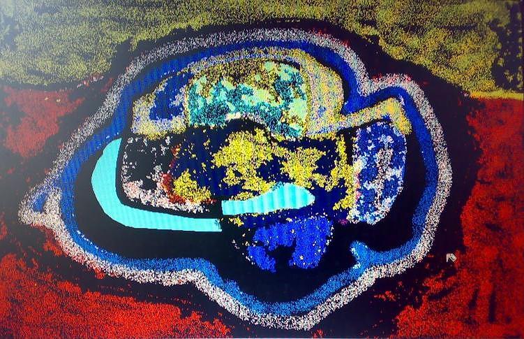 a Painting by Satyajit Shergill