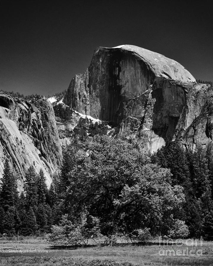 America Photograph - A Scene Of Yosemite - Black And White by Hideaki Sakurai