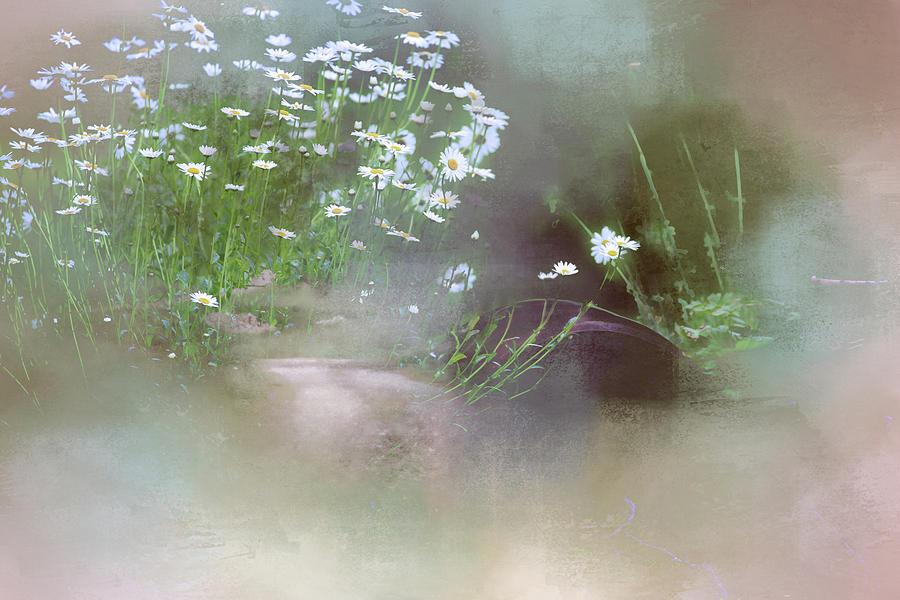 A Secret Place Photograph