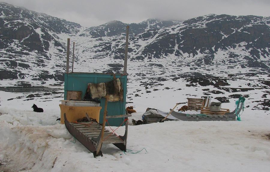 Arctic Photograph - A Sledge Dog House by Sidsel Genee