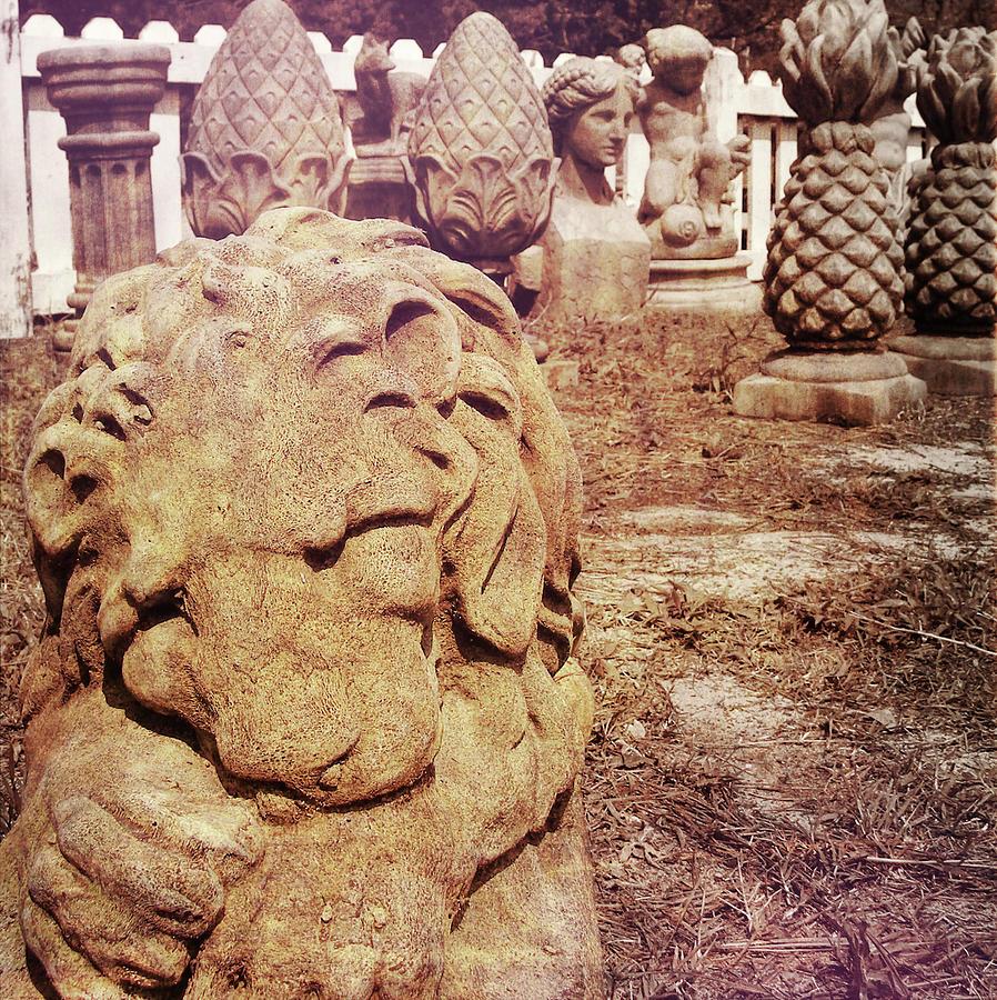 Sculpture Photograph - A Sleeping King by JAMART Photography