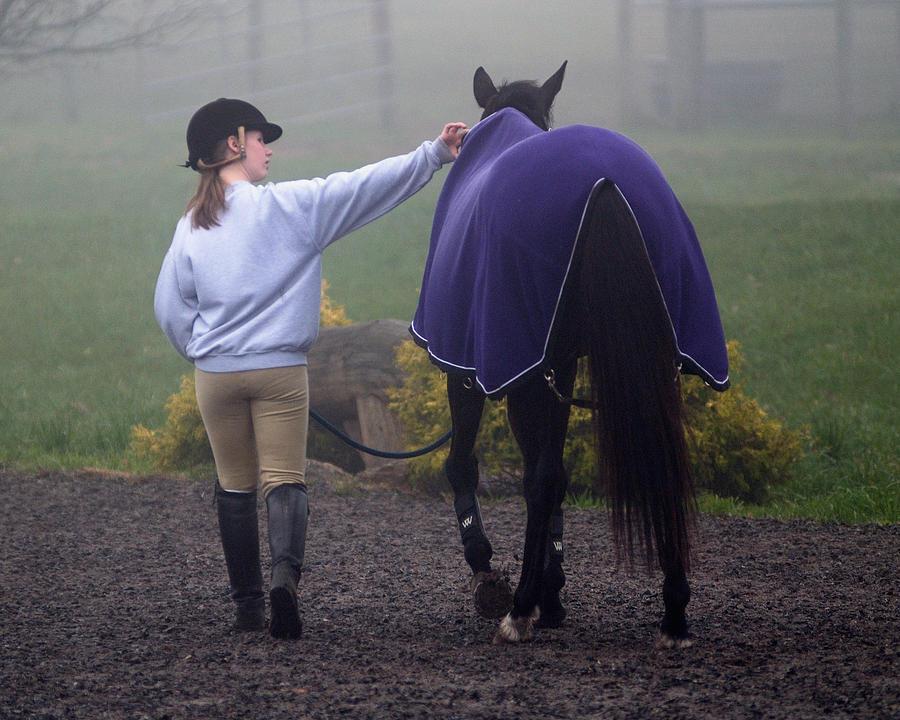 Horse Photograph - A Slight Adjustment by Don Schroder