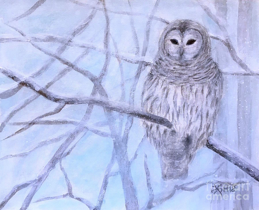 Snowy Owl Painting - A Barred Owl by Wonju Hulse