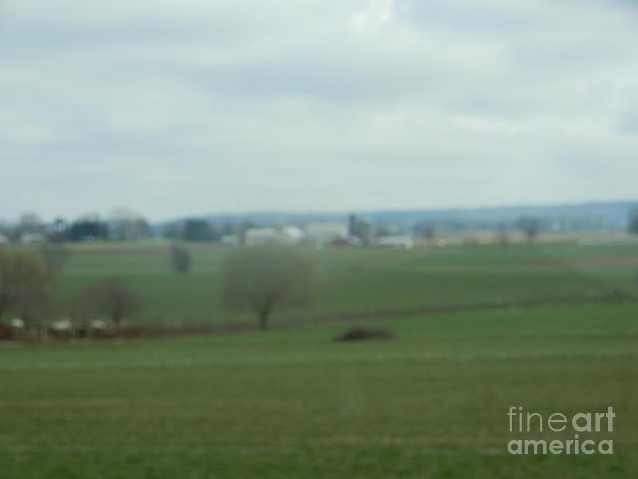 Amish Photograph - A Spring Amish Vista by Christine Clark