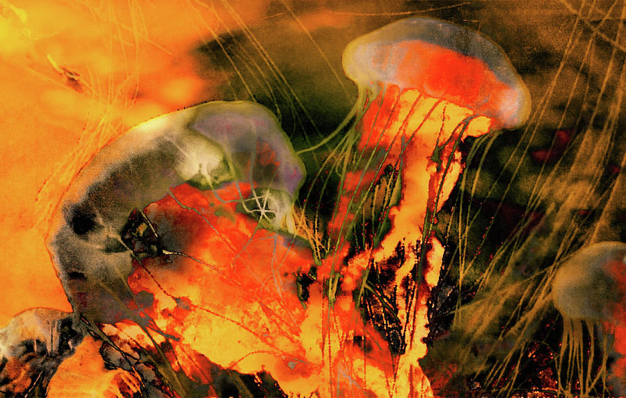 Home Decor Photograph - A Sting Like Fire by Susan Maxwell Schmidt
