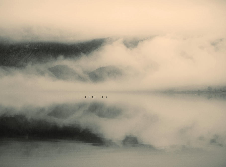 Lake Photograph - A Study Of Clouds by Tara Turner