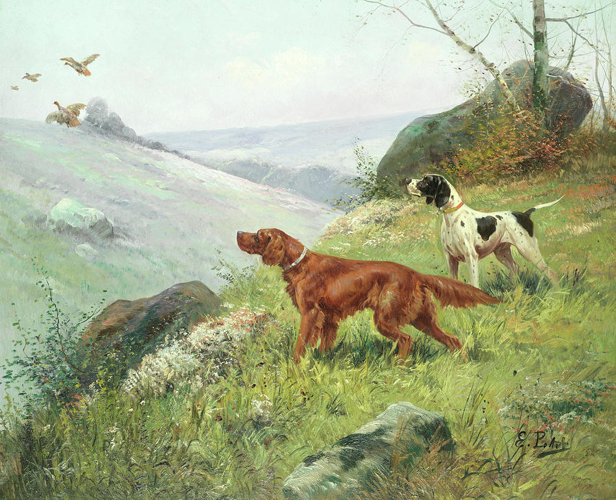 Irish Setter Painting - A Study Of Gun Dogs by Eugene Petit