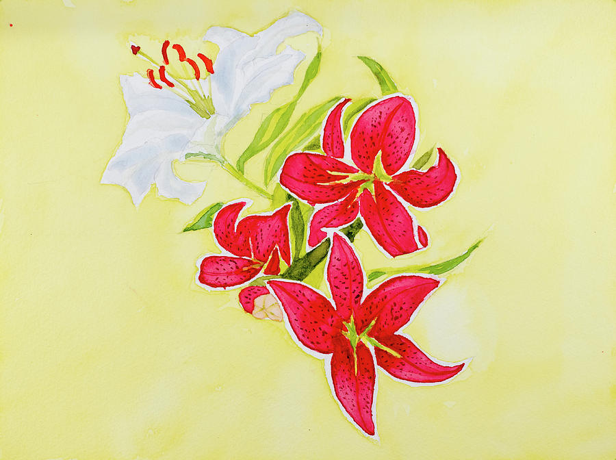 A study of Lilies by Dorothy Darden