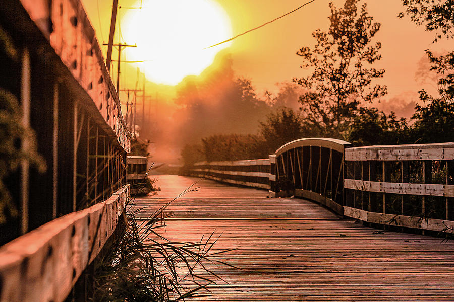 Background Photograph - A sunrise view from a park footbridge by Maxwell Dziku
