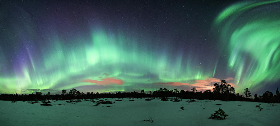 Aurora Photograph - A swish and flick by Kolbein Svensson