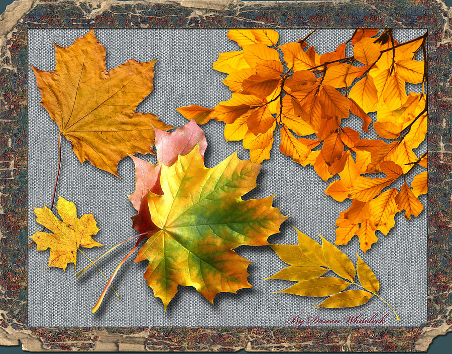 Fall Digital Art - A Taste Of Fall by Doreen Whitelock