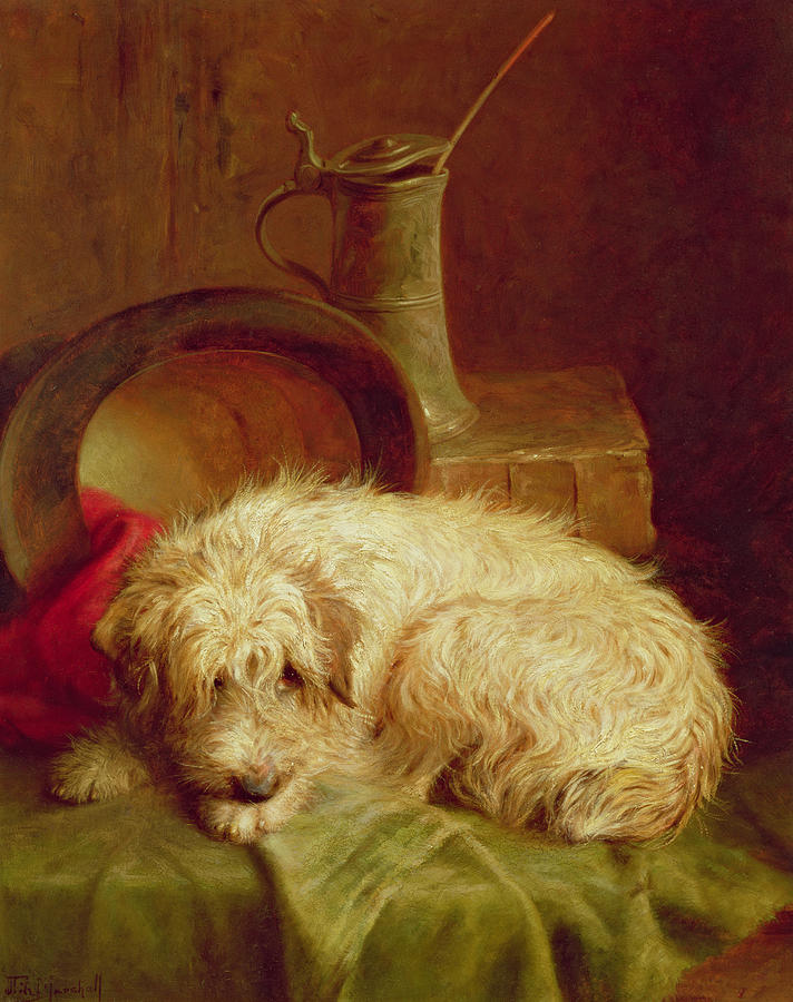 Terrier Painting - A Terrier by John Fitz Marshall