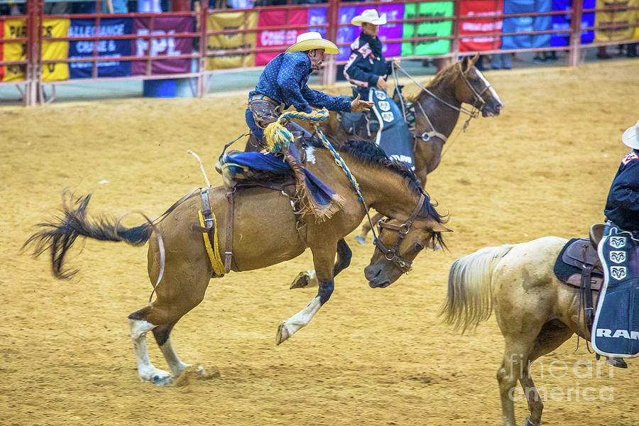 Rodeo Photograph - A Thing Of Beauty by Rene Triay Photography