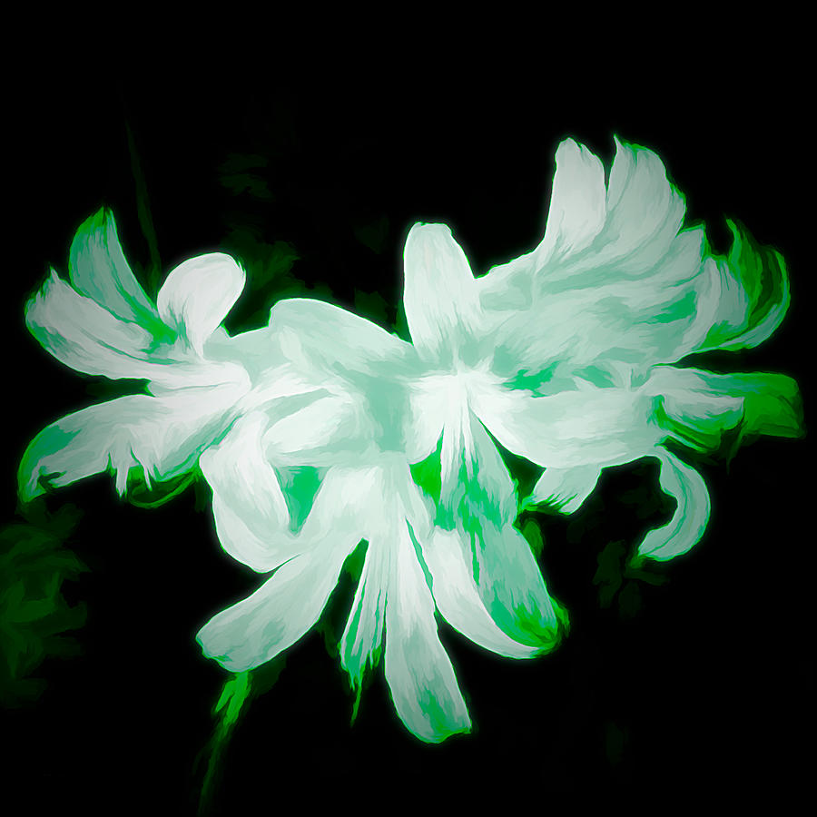 Digital Art Mixed Media - A Touch Of Green On The Lilies by Debra Lynch