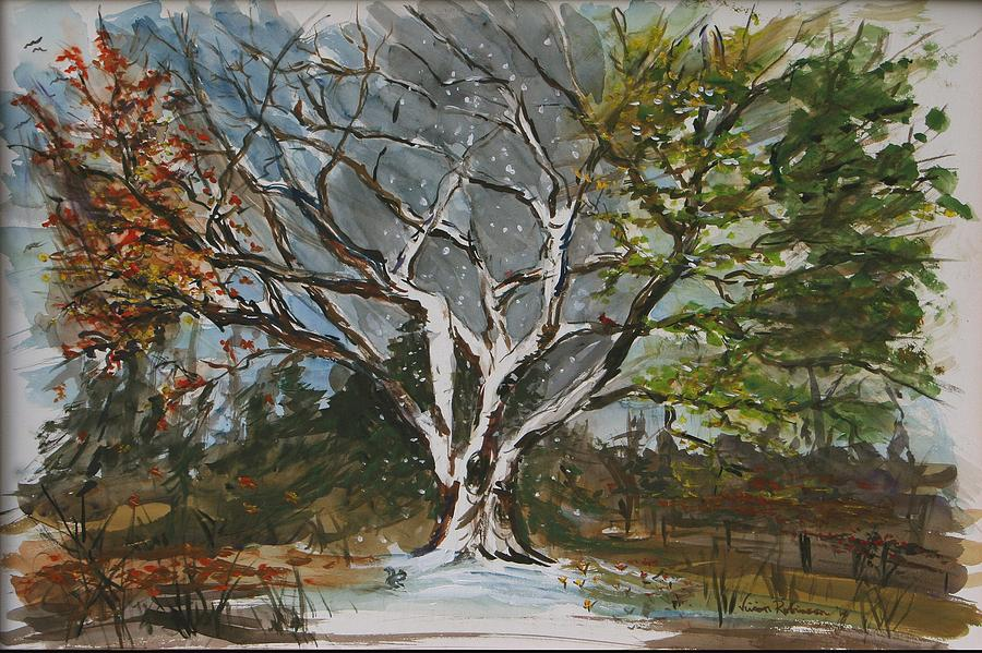 four season tree art - Google Search. Not exactly what I was ...