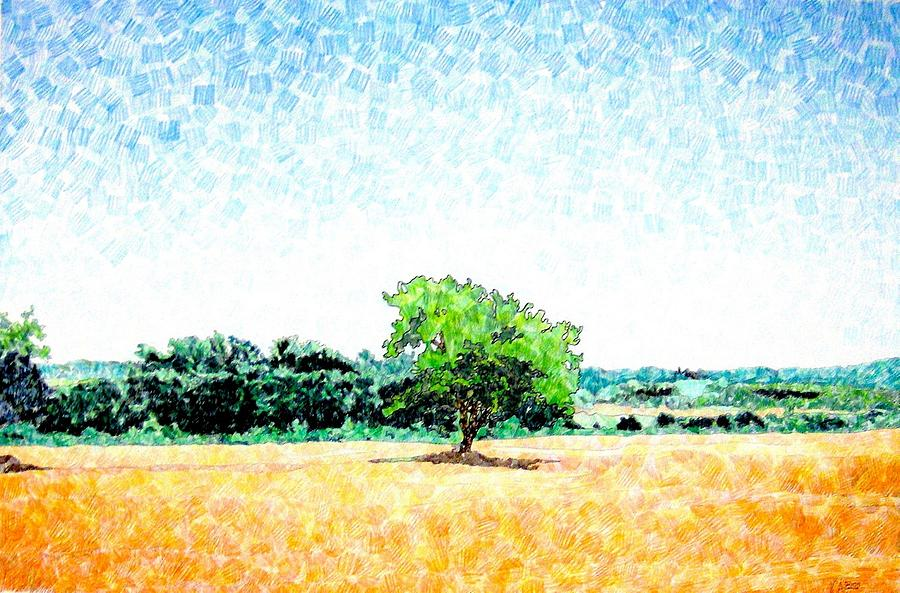 Italy Drawing - A Tree Near Siena by Jason Charles Allen