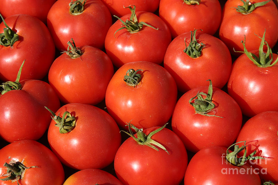 Bell Canvas Prints Photograph - A Trip Through The Farmers Market With Red Tomatoes by Michael Ledray