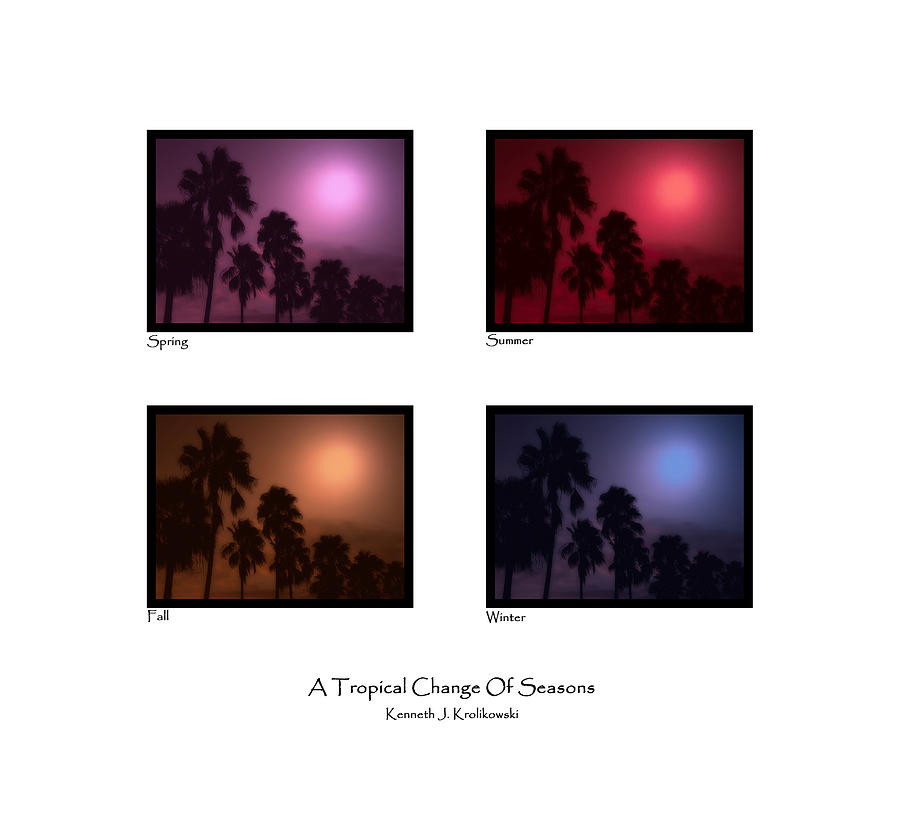 Palm Photograph - A Tropical Change Of Seasons by Kenneth Krolikowski