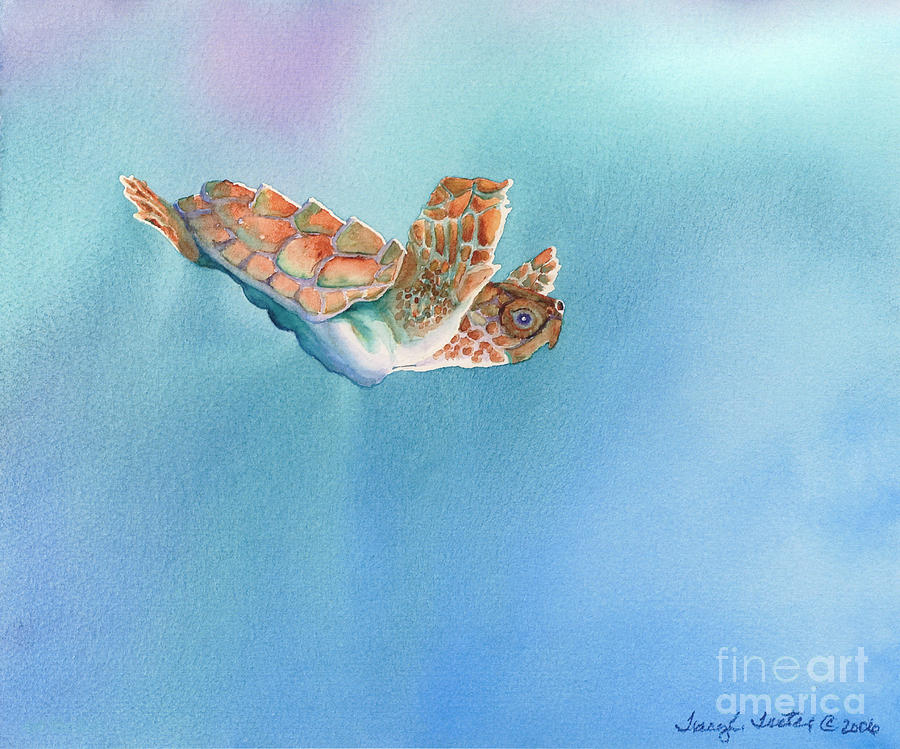 Sea Painting - A Turtles Flight by Tracy L Teeter