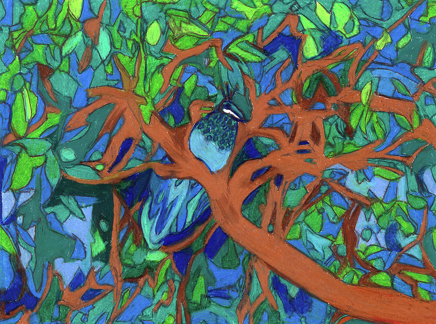 Peacock Painting - A Very Pretty Peacock in a Pear Tree by Denise Weaver Ross