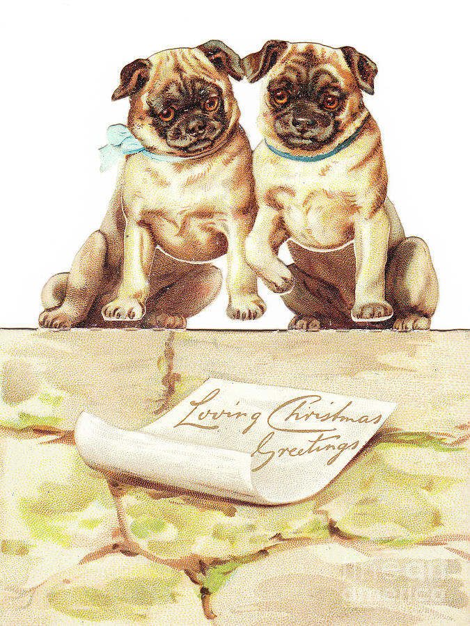 A Victorian Die Cut Three Dimensional Christmas Card Of Two Bulldogs ...