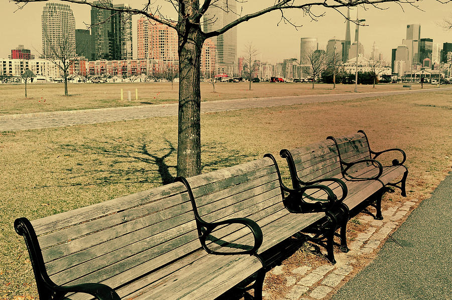 Jersey Photograph - A View From A Park Bench by JAMART Photography