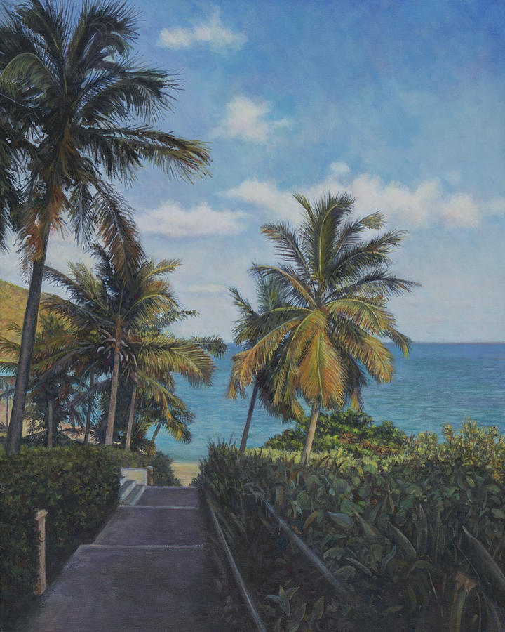 Virgin Islands Painting - A View In The Virgin Islands by David P Zippi