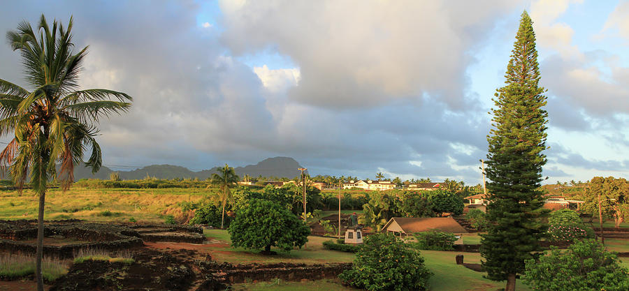 Kalanianaole Photograph - A View Of Prince Kuhio Park by Bonnie Follett