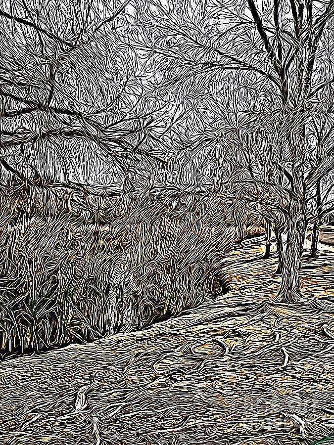 A Walk In The Park by Bridgette Gomes