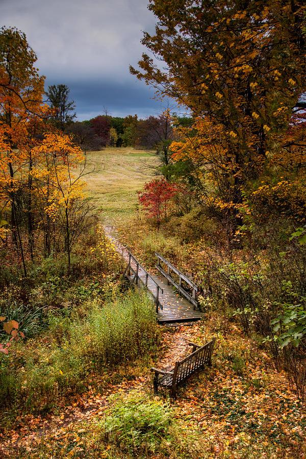 Arboretum Photograph - A Walk in the Park I by Tom Mc Nemar