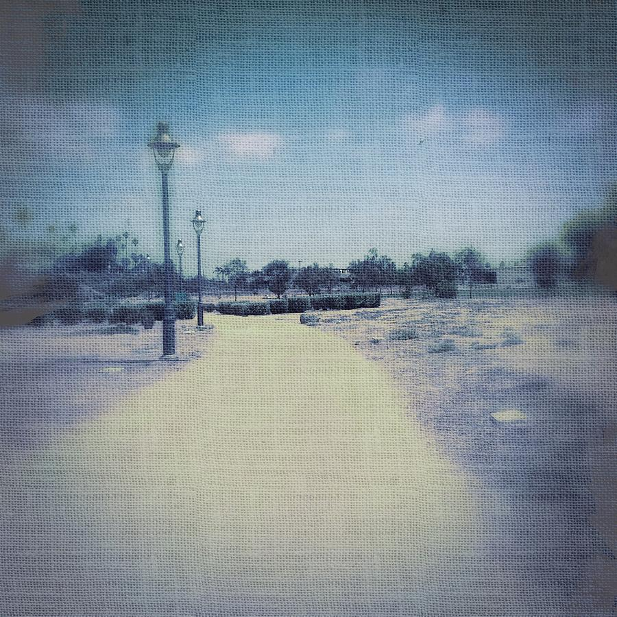 Landscape Photograph - A Walk In The Park by Judith Kitzes