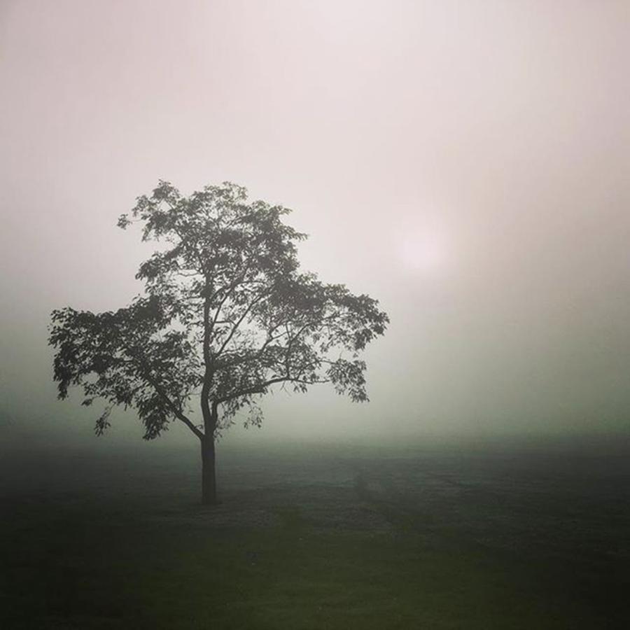 Fog Photograph - A Walk Through The Clouds #fog #nuneaton by John Edwards