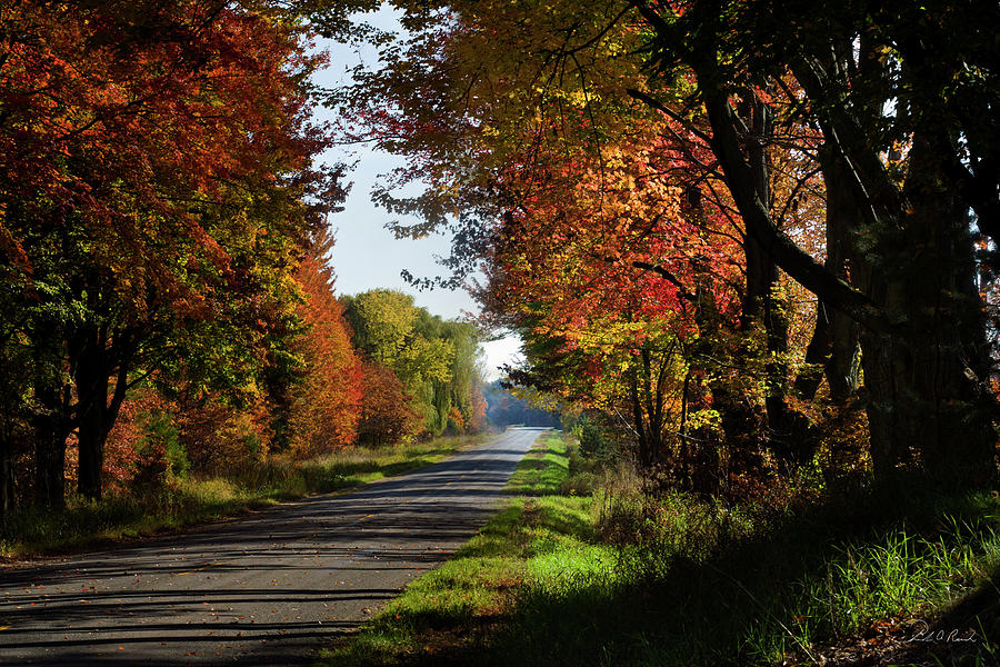 Color Photograph - A Warm Fall Day by Frederic A Reinecke