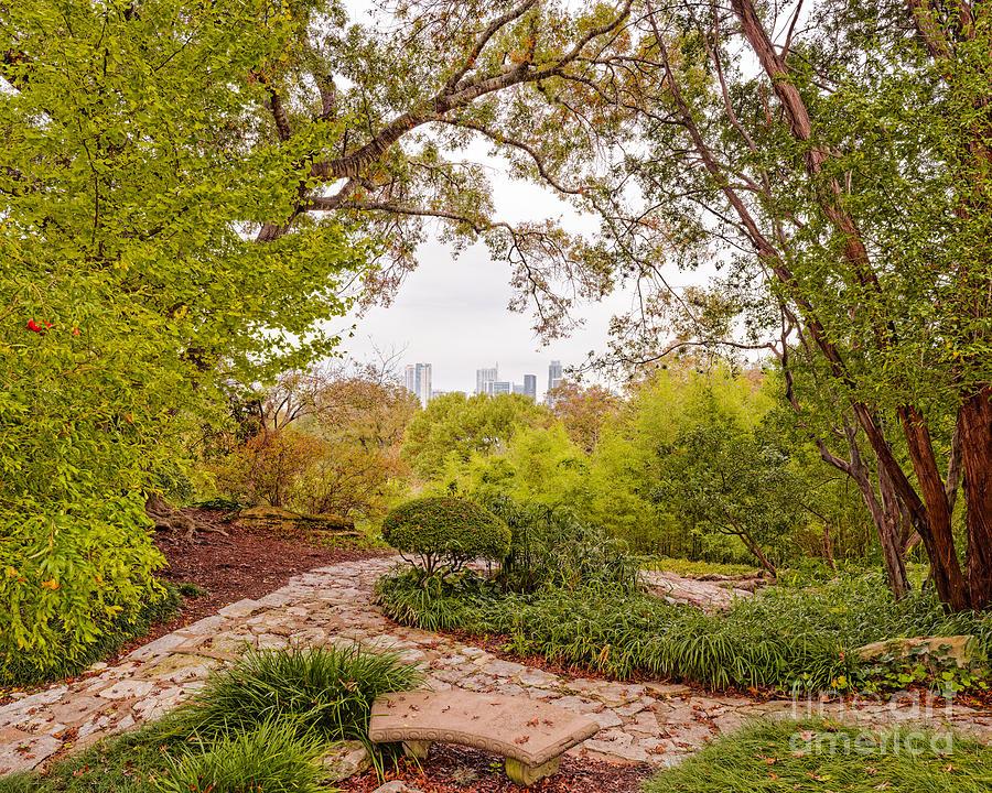 A Window To Downtown Austin From Zilker Botanical Garden