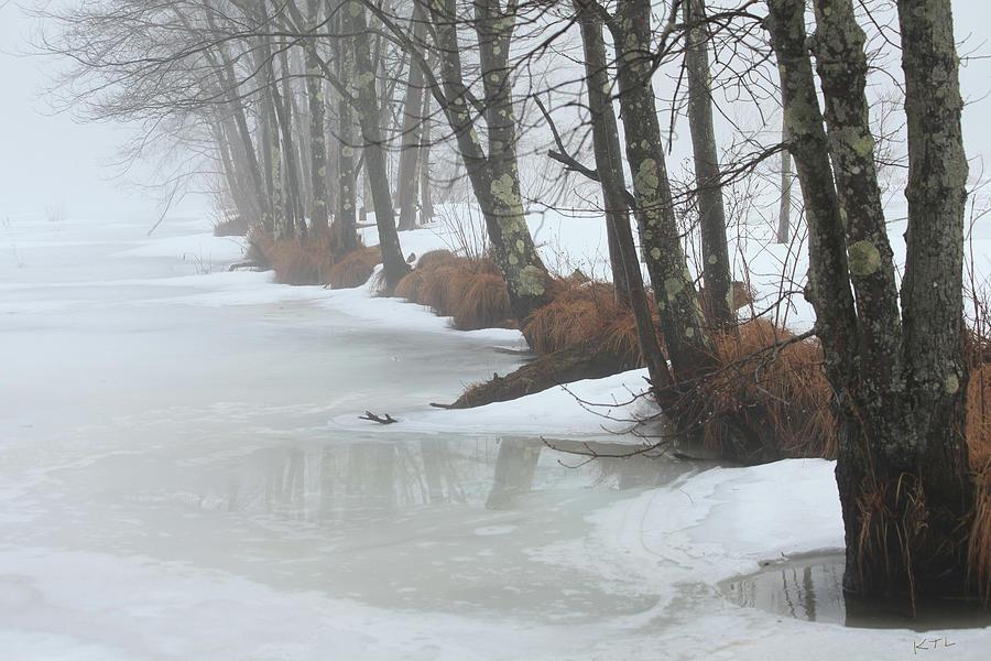 Winter Photograph - A Winters Scene by Karol Livote