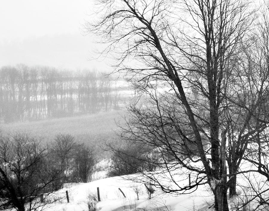 Landscape Photograph - A Wintry Day by Gerlinde Keating - Galleria GK Keating Associates Inc