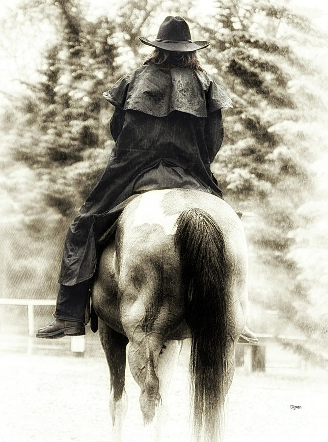 Horse Photograph - A Woman And A Horse  by Steven Digman