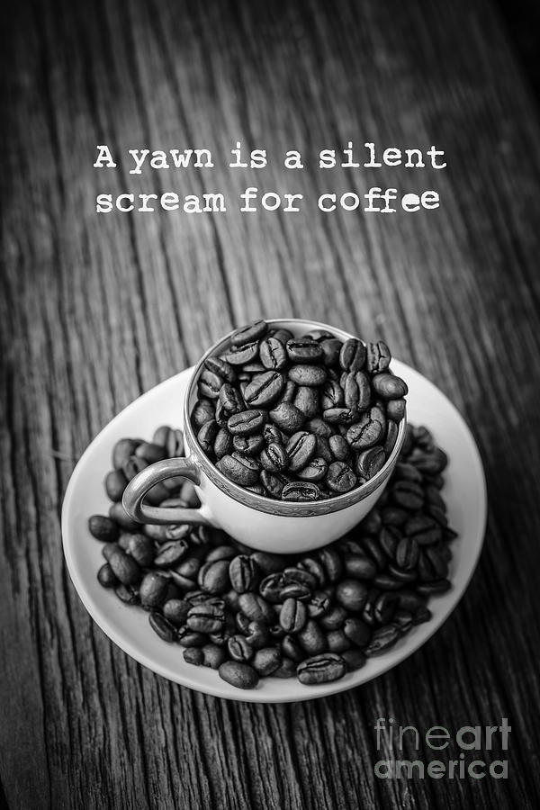 Coffee Photograph - A Yawn Is A Silent Scream For Coffee by Edward Fielding