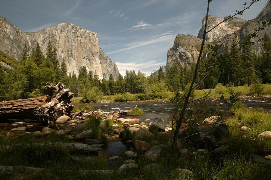Yosemite Photograph - A Yosemite Moment by Tawann Simmons